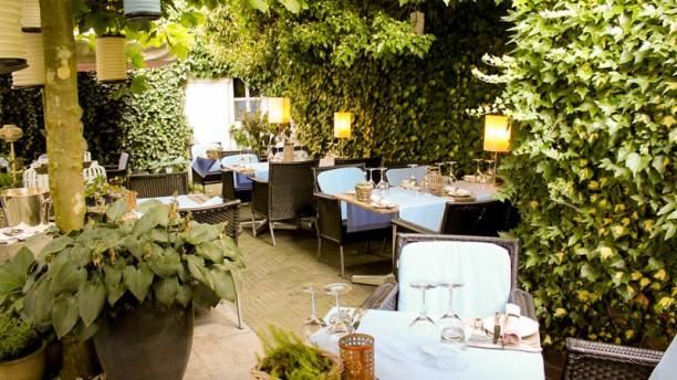 Salon de Provence Terras