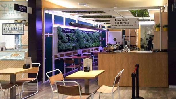 Barajas 20 Tapas vista desde el pasillo del gourmet experience