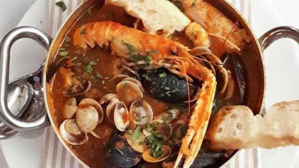Gatto Papone Food&Wine Suggerimento dello chef