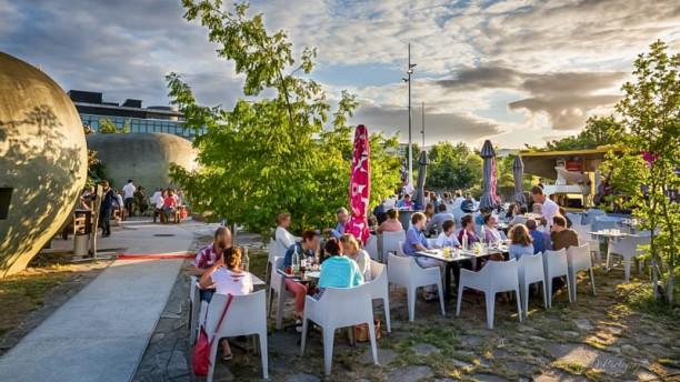 Le caillou du jardin botanique restaurant jardin for Restaurant jardin botanique
