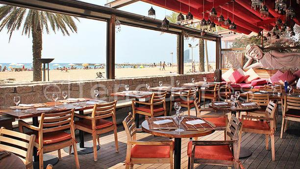 Carpe diem barcelona cdlc in barcelona restaurant for Carpe diem barcelona