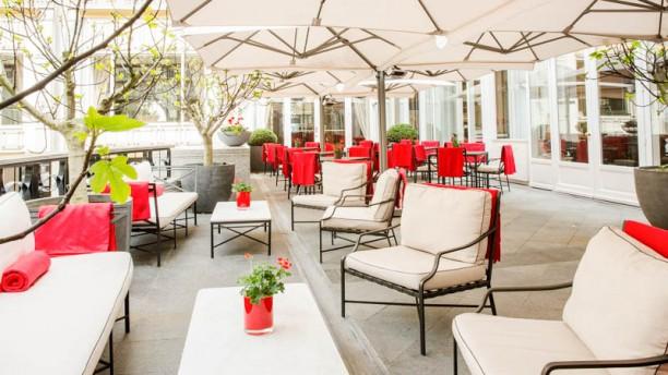 Loui Bar & Restaurant Terrasse
