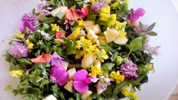 La Taverna del Panfilo Insalata spontanea con fiori