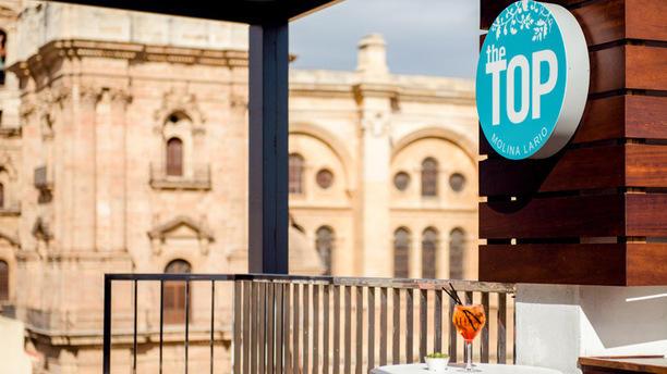 The Top Hotel Molina Lario In Málaga Restaurant Reviews