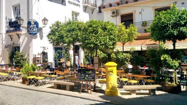 Café Flore terrasa