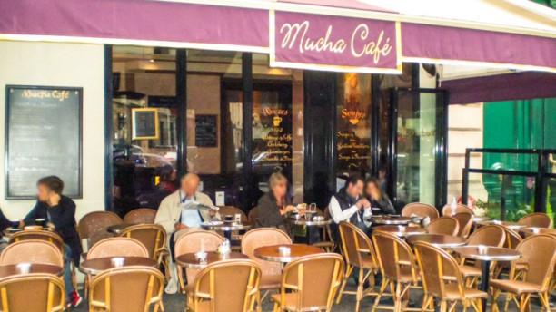 Mucha Café Vue de la terrasse
