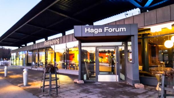 Haga forum entre
