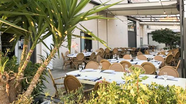 Taverna Enovin Terraza