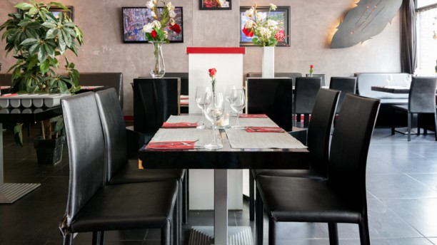 Amore Trattoria Breda Restaurant