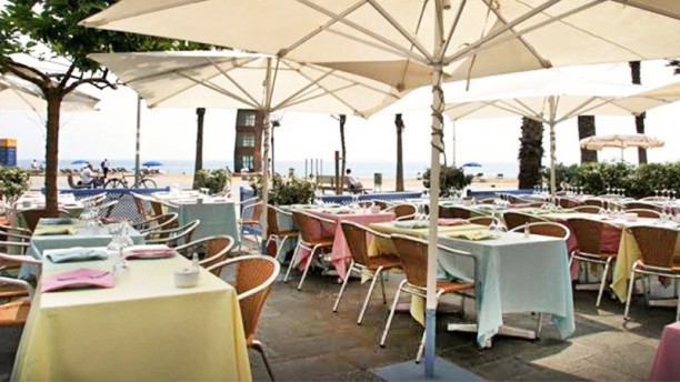 Cal pinxo platja em barcelona pre os menu morada - Restaurante umo barcelona ...