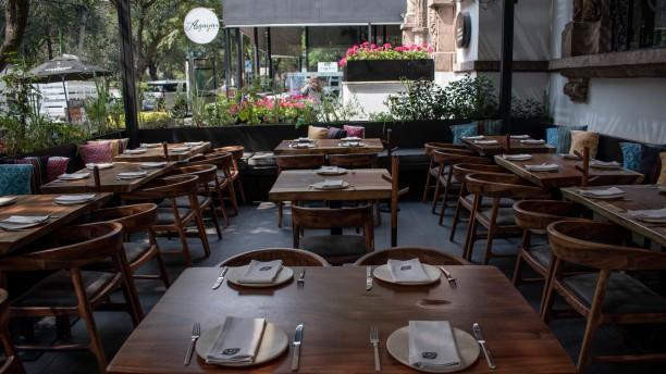 Nativo Polanco In Mexico City Restaurant Reviews Menu And