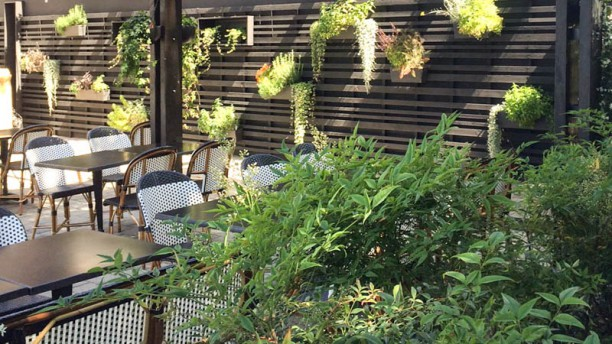 Cantinetta Meal terrasse