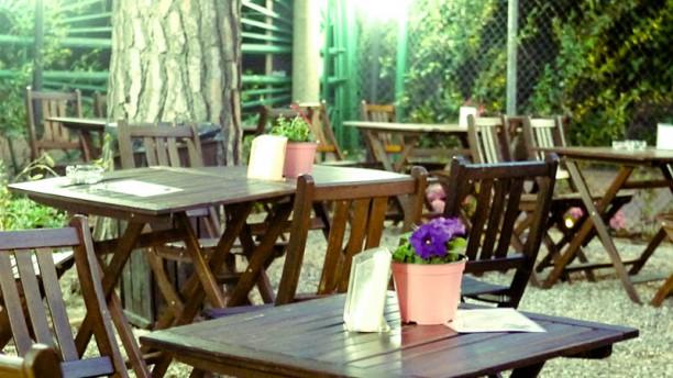 Appia Antica Caffe Tavoli esterni