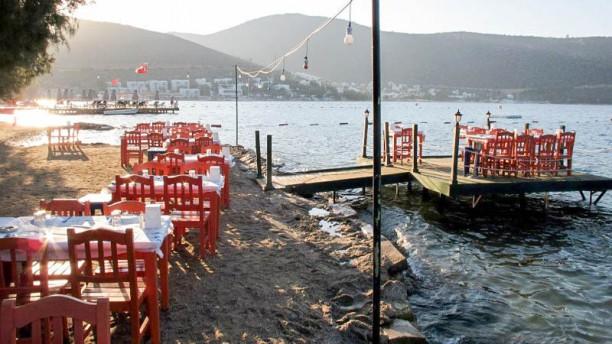 Gonca Balık Tables on the beach
