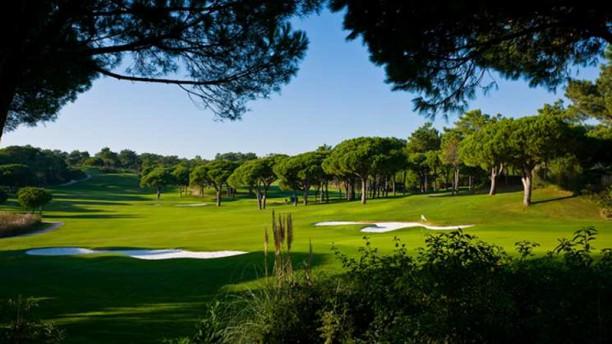 Mammasantissima Ristorante & Bar golf