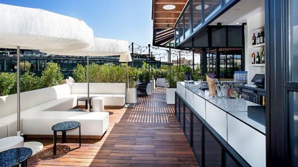 Rooftop Verbena - Monument Hotel Terraza