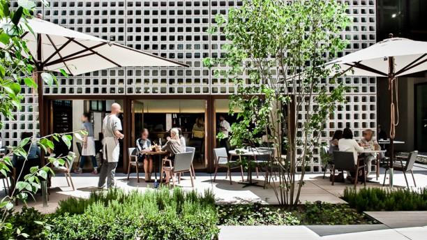 Restaurante Bosco De Lobos En Madrid Chueca Tribunal