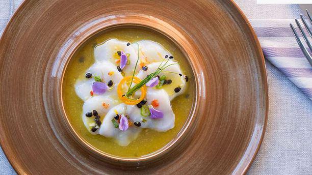 Mistura Restaurant Italy Suggerimento dello chef