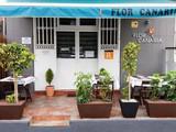 Flor Canaria