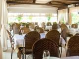 Curi (Venit Barra Hotel)