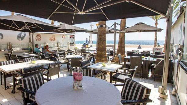Ritz Albir Terraza
