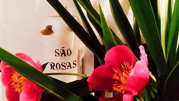 São Rosas sao rosas
