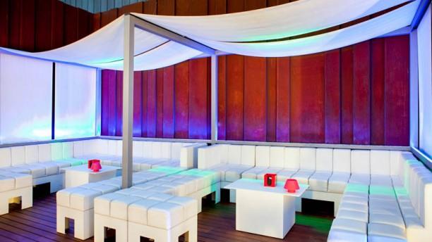 Terraza Alaire Ramblas In Barcelona Restaurant Reviews