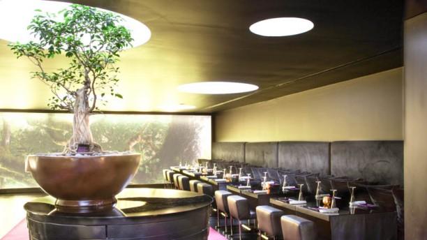 Bonsai - DoubleTree by Hilton Sala