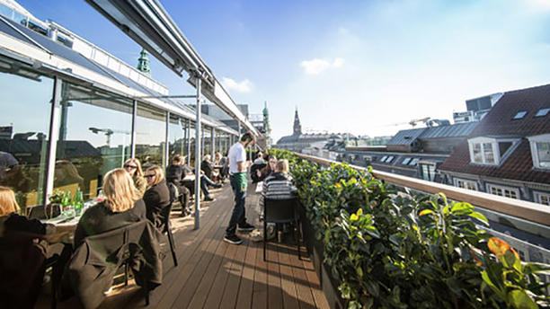 Bar Jacobsen Illum Rooftop Værelse