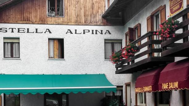 Stella Alpina esterno