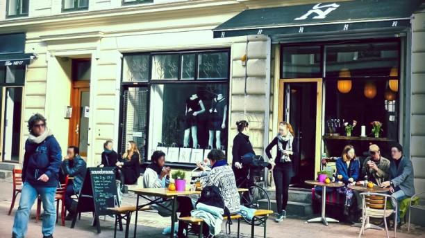 Cafe N entre