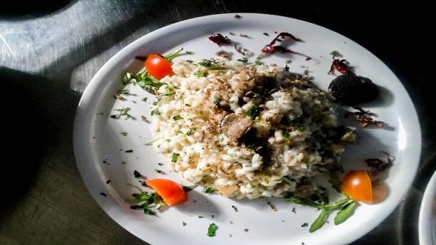 Cervo Bianco Suggerimento dello chef