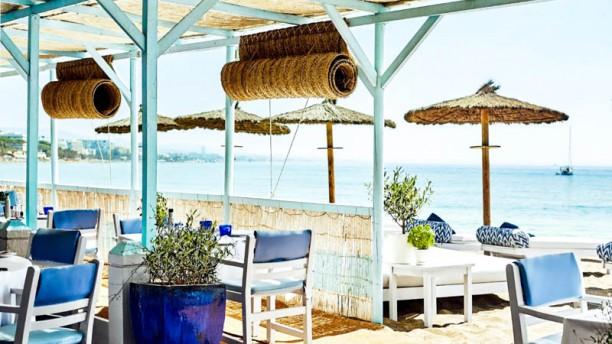 MC Beach Terraza
