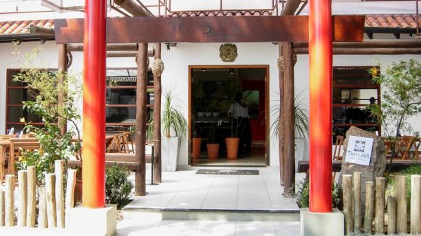 Tatibana Japanese Cuisine - Maringá Entrada