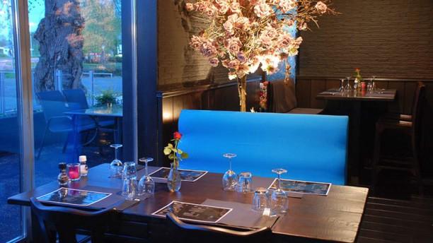 Dutch Premium Grill Restaurant