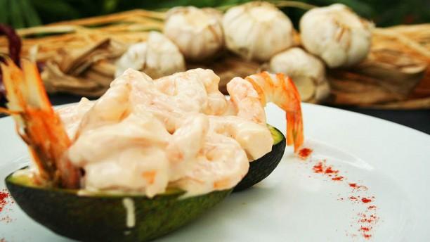 La Bamba abacate com camarão