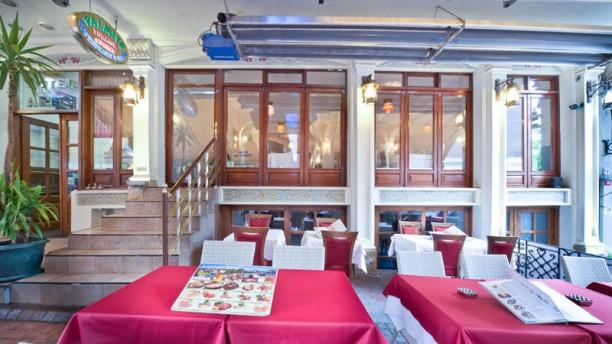 Palmiye Terrace