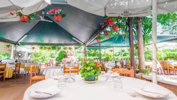 Ristorante appio claudio a roma menu prezzi immagini - Ristorante con tavoli all aperto roma ...