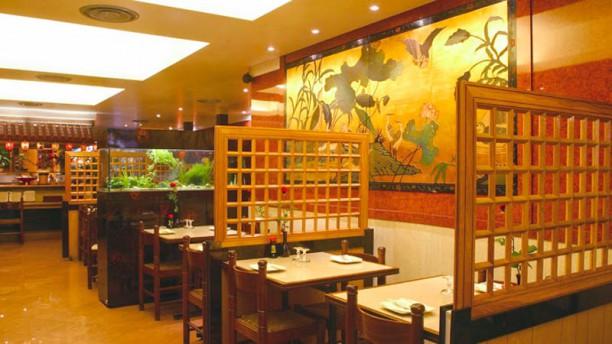 Carte Cafe Japonais Bordeaux.Restaurant Yako In Bordeaux Restaurant Reviews Menu And