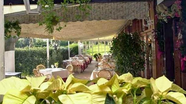 Artebakarra Vista de la terraza