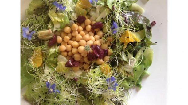 Come Se Gallery bar insalata di primavera con avocado e borragine