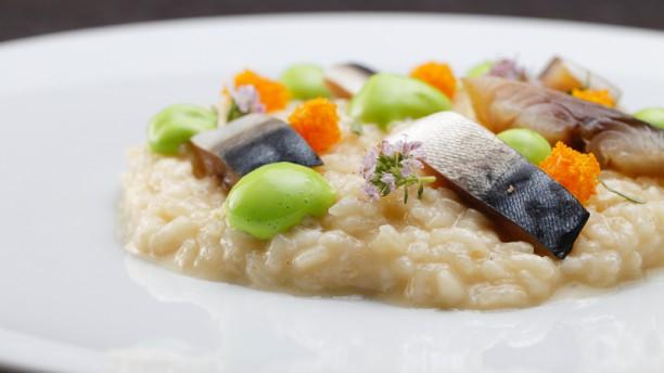 Cesoia Risotto, fumetto, arancia, sgombro affumicato e wasabi - senza glutine