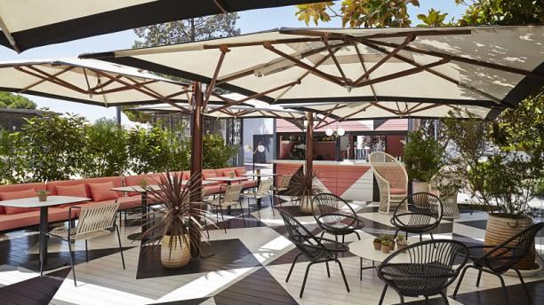 Restaurante Café Colón Madrid En Madrid Justicia Recoletos