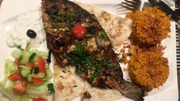 Al Basha Suggestie van de chef