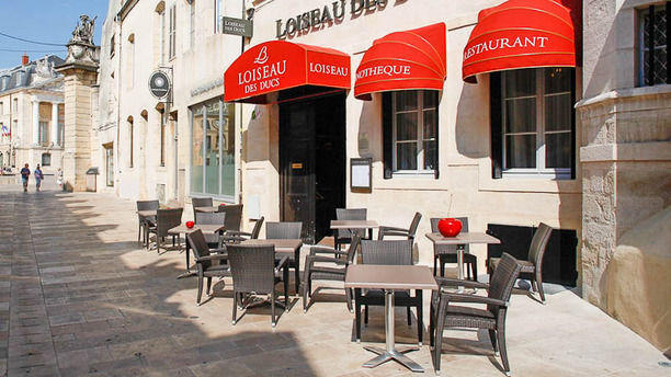 Loiseau des Ducs La terrasse