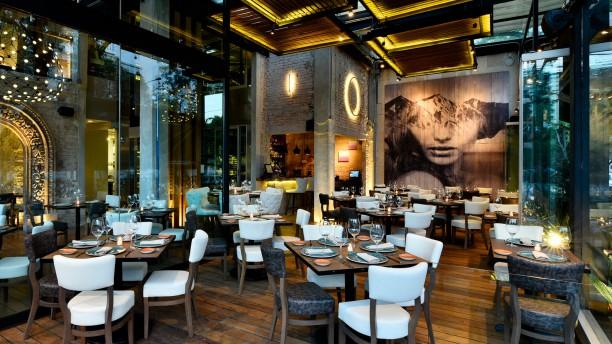 Rosa Negra In Mexico City Restaurant Reviews Menu And