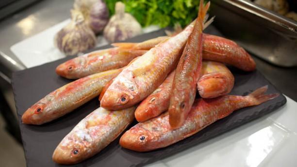 César Place poisson du jour