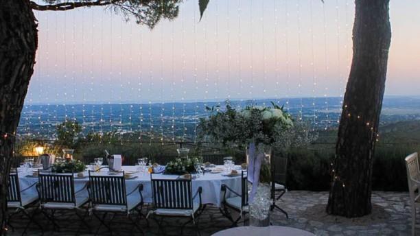 Abbaye De Sainte Croix In Salon De Provence Restaurant