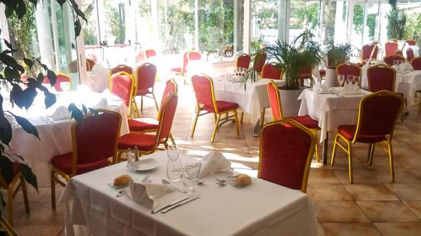 Restaurant Des Palmiers Nice