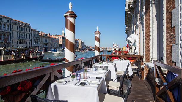 Antinoo S Lounge Restaurant In Venice Restaurant Reviews